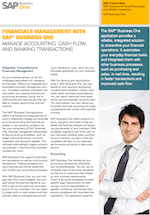 b1 brochure - financial management with business one